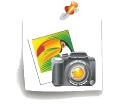 درج تصاویر ثابت در گوشه های صفحه